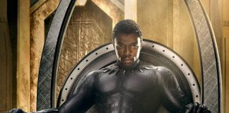 Black Panther Hero