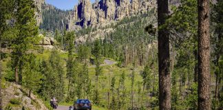 Custer State Park_ Needles